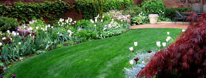 Low Maintenance Gardens Garden Design Amp Ideas In