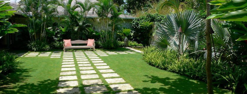 Tropical garden design landscaping in brisbane for Qld garden design ideas