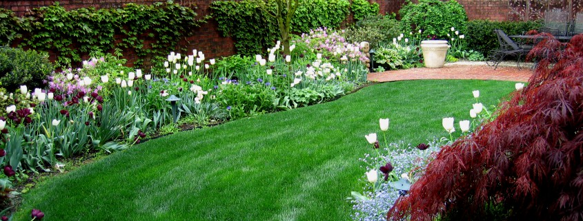 Low maintenance gardens garden design ideas in for Landscape design brisbane