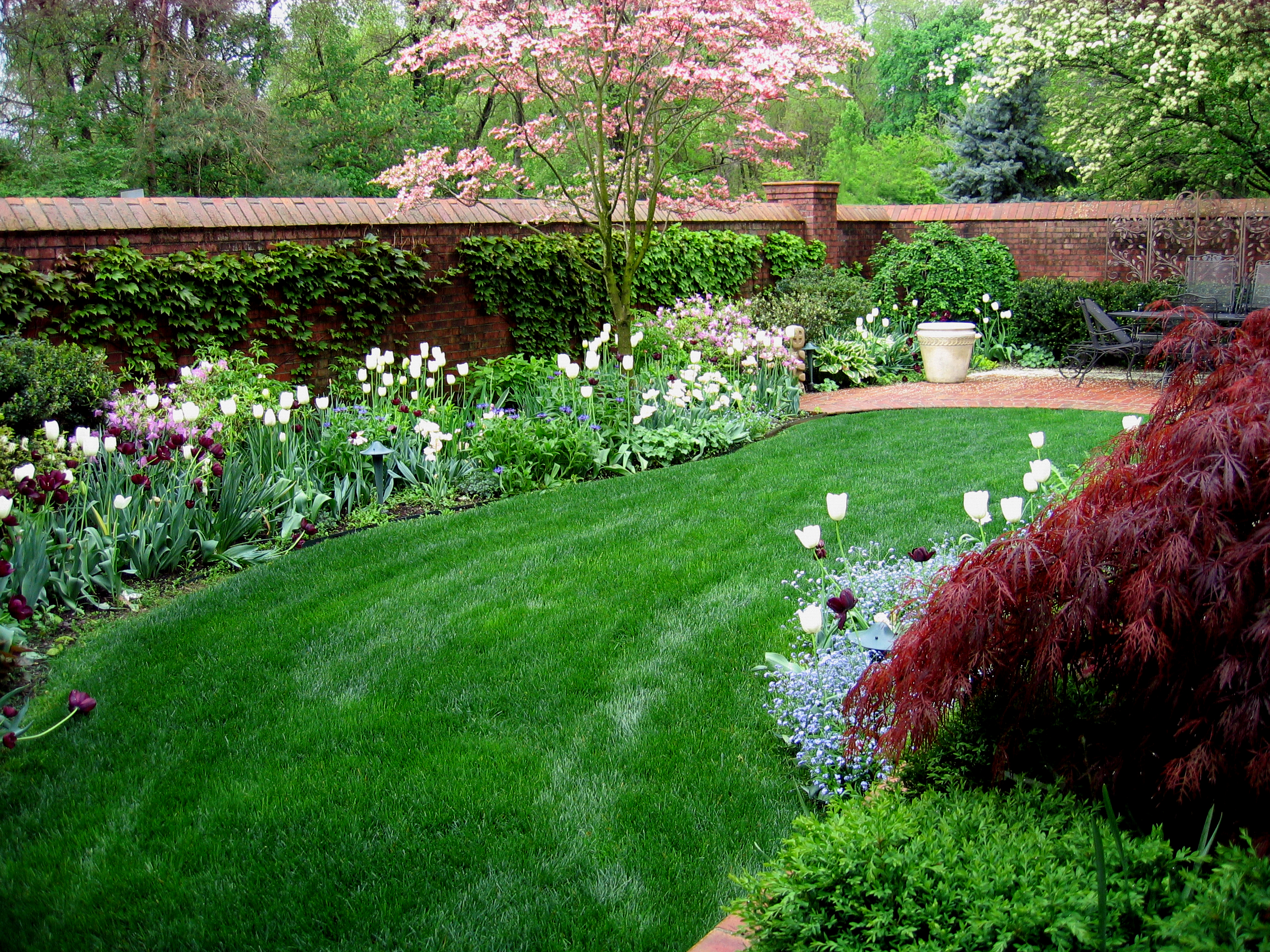 Low maintenance gardens garden design ideas in for Low maintenance garden design