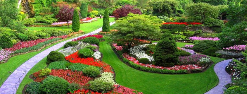 Garden Ideas Brisbane garden designs & garden ideas in brisbane, queensland, au